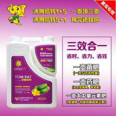 黃瓜專用大量元素水溶肥(湯姆倍特5+1)